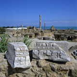 Ruins of Ancient Roman Baths, Antonine Baths, Carthage, UNESCO World Heritage Site, Tunis, Tunisia, Photographic Print by Stuart Black