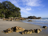 Main Beach in Mount Maunganui, Tauranga City, North Island, New Zealand, Pacific Photographic Print by Richard Cummins