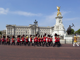 Band of the Coldstream Guards Marching Past Buckingham Palace During the Rehearsal for Trooping the Reprodukcja zdjęcia autor Stuart Black