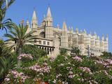 Palma Cathedral (La Seu), Palma De Mallorca, Mallorca (Majorca), Balearic Islands, Spain, Mediterra Photographic Print by Stuart Black