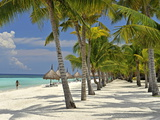 Beach Scene, Panglao, Bohol, Philippines, Southeast Asia, Asia Photographic Print by Luca Tettoni