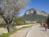 Cyclists on Country Road, Alaro, Mallorca, Balearic Islands, Spain, Europe Photographic Print by Ruth Tomlinson
