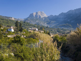 View Up Fertile Valley to Puig Major, the Island's Highest Peak, Soller, Mallorca, Balearic Islands Photographic Print by Ruth Tomlinson