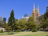 St. Mary's Cathedral Viewed from the Domain, Central Business District, Sydney, New South Wales, Au Photographic Print by Richard Cummins