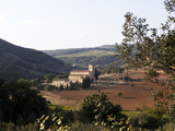 The Abbey of Sant'Antimo, Near Chianciano, Tuscany, Italy, Europe Photographic Print by Oliviero Olivieri