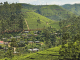 Village Amidst Tea Plantations in the Hill Country Between Hatton and Nuwara Eliya, Central Highlan Photographic Print by Rob Francis