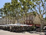 Alfresco Restaurants, Place De L'Horloge, Avignon, Provence, France, Europe Photographic Print by Peter Richardson