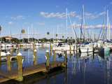 Marina, St. Petersburg, Gulf Coast, Florida, United States of America, North America Photographic Print by Jeremy Lightfoot