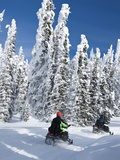 Snowmobilers Riding Through a Forest of Hoar Frosted Trees on Two Top Mountain, West Yellowstone, M Impresso fotogrfica por Kimberly Walker