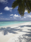 Tropical Beach, Maldives, Indian Ocean, Asia Photographic Print by Sakis Papadopoulos