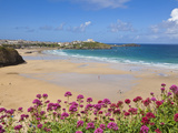 Newquay Beach with Valerian in Foreground, Cornwall, England, United Kingdom, Europe Photographic Print by Neale Clark