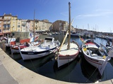Fishing Vessels and Harbour, St. Tropez, Var, Provence, Cote D'Azur, France, Mediterranean, Europe Photographie par Peter Barritt