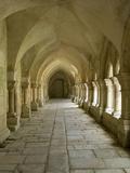 Cloisters, Fontenay Abbey, UNESCO World Heritage Site, Burgundy, France, Europe Fotografisk trykk av Rolf Richardson