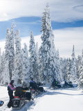 Snowmobilers in a Hoar Frosted Forest on Two Top Mountain, West Yellowstone, Montana, United States Impresso fotogrfica por Kimberly Walker