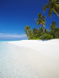 Tropical Island, Maldives, Indian Ocean, Asia Photographic Print by Sakis Papadopoulos