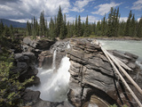 Athabasca Falls, Jasper National Park, UNESCO World Heritage Site, British Columbia, Rocky Mountain Photographic Print by Martin Child