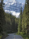 Road to Mount Edith Cavell, Jasper National Park, UNESCO World Heritage Site, British Columbia, Roc Photographic Print by Martin Child