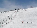 Winter Sports at Feldberg, Black Forest, Baden-Wurttemberg, Germany, Europe Photographie par Hans-Peter Merten