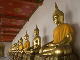 Sitting Buddhas, Wat Pho (Reclining Buddha Temple), (Wat Phra Chetuphon), Bangkok, Thailand, Southe Photographic Print by Richard Maschmeyer