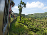 Train from Kandy to Hatton, Hill Country, Sri Lanka, Asia Photographic Print by Kim Walker