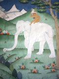 Painting of the Four Harmonious Friends in Buddhism, Elephant, Monkey, Rabbit and Partridge, Inside Photographic Print by Lee Frost