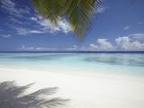 Maldives Tropical Beach, Maldives, Indian Ocean, Asia Photographic Print by Sakis Papadopoulos