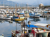 The Port, Ajaccio, Corsica, France, Mediterranean, Europe Photographic Print by Nico Tondini