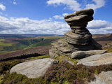 Salt Cellar Rock, Derwent Edge, with Purple Heather Moorland, Peak District National Park, Derbyshi Lámina fotográfica por Neale Clark
