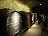 People and Wine Barrels Inside Cellar of Loisium Winery, Langelois, Niederosterreich, Austria, Euro Photographic Print by Richard Nebesky