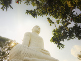 The Large 27M Buddha Statue at Sri Maha Bodhi Viharaya Temple on Bahirawakanda Hill Overlooking the Photographic Print by Rob Francis