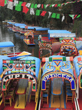 Brightly Painted Boats, Xochimilco, Trajinera, Floating Gardens, Canals, UNESCO World Heritage Site Photographic Print by Wendy Connett