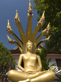Sitting Buddha with Naga Heads, Wat Mai Complex, Luang Prabang, Laos, Indochina, Southeast Asia, As Photographic Print by Richard Maschmeyer
