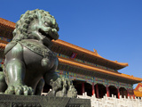 Male Bronze Lion, Gate of Supreme Harmony, Outer Court, Forbidden City, Beijing, China, Asia Fotografisk tryk af Neale Clark
