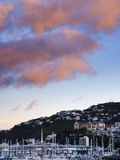 Wellington, North Island, New Zealand, Pacific Photographic Print by Michael Snell