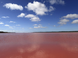 Edible Algae Provides a Pink Hue to the Hutt Pink Lagoon, Port Gregory, Western Australia, Australi Photographic Print by Stuart Forster