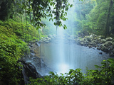 Crystal Shower Falls, Dorrigo National Park, New South Wales, Australia, Pacific Photographic Print by Jochen Schlenker