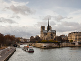 Notre Dame Cathedral on the Ile De La Cite, Paris, France, Europe Photographic Print by Julian Elliott