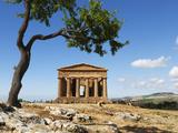 Tempio Di Concordia (Concord) and Almond Tree, Valle Dei Templi, UNESCO World Heritage Site, Agrige Photographic Print by Stuart Black