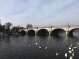 Kingston Bridge Spans the River Thames at Kingston-Upon-Thames, a Suburb of London, England, United Photographic Print by Stuart Forster