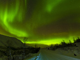 Aurora Borealis (Northern Lights) Seen over a Snow Covered Road, Troms, North Norway, Scandinavia,  Photographic Print by Neale Clark