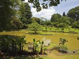 The Lake by South Drive in the 60 Hectare Royal Botanic Gardens at Peradeniya, Near Kandy, Sri Lank Photographic Print by Rob Francis
