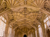 Bodleian Library Interior, Oxford University, Oxford, Oxfordshire, England, United Kingdom, Europe Fotografisk tryk af Ben Pipe