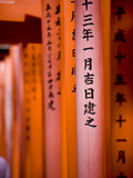 Vermillion Torii Gates, Fushimi-Inari Taisha, Kyoto, Japan, Asia Photographic Print by Ben Pipe