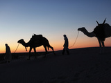 Camel Drivers at Dusk in the Sahara Desert, Near Douz, Kebili, Tunisia, North Africa, Africa Fotografie-Druck von  Godong