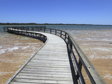 Wooden Jetty for Viewing Thrombolites in Lake Clifton, Yalgorup National Park, Western Australia, A Photographic Print by Stuart Forster