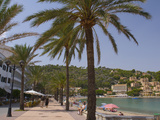 Beach with Palm Trees, Soller, Mallorca, Balearic Islands, Spain, Mediterranean, Europe Photographic Print by Ben Pipe
