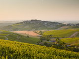 Dawn Light Starts to Fill the Skies Above the Village and Vineyards of Sanerre, Cher, Loire Valley, Photographic Print by Julian Elliott