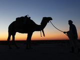 Camel Driver at Dusk in the Sahara Desert, Near Douz, Kebili, Tunisia, North Africa, Africa Photographic Print by  Godong