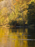 Beautiful Autumn Colours Reflecting in the River Creuse, a Favourite Area of the River of the Artis Photographic Print by Julian Elliott
