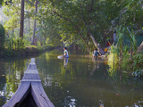 Backwaters, Allepey, Kerala, India, Asia Photographic Print by  Tuul